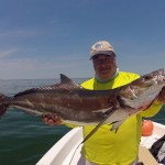 Cobia Fishing Is Fantastic