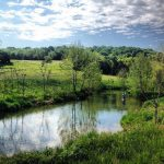 Susie Q Farm Open For Fall Fishing