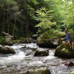 Whitetop Laurel: Virginia's Most Unique Stream