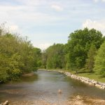 Summer Hatches on the South River