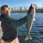 Stripers at Nags Head