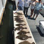 Flounder, Flounder Everywhere