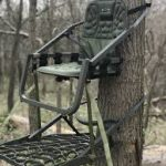 Life In a Tree Stand